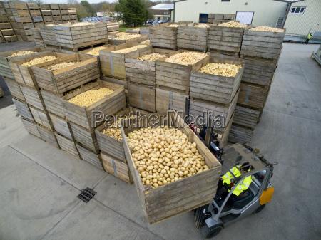 worker driving forklift moving bin of