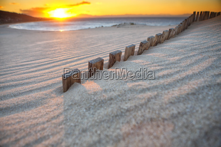 bologna dune is a sand dune