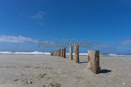 lead lonely beach with wooden posts