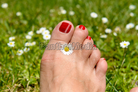 woman foot with red nails on