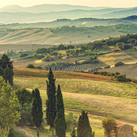 fields in tuscany