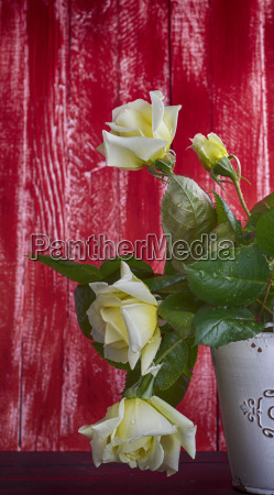 white roses on a red wooden