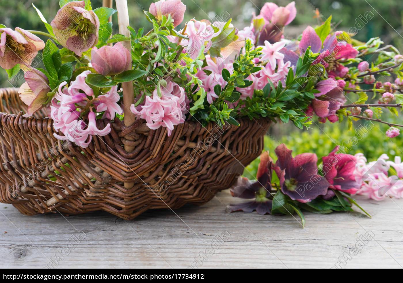 flower, basket - 17734912