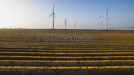 wind turbines in crop field germany