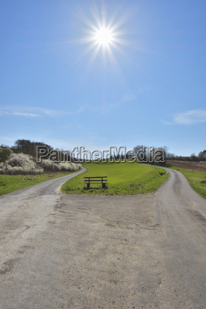 forked road with bench and sun