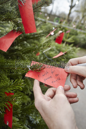 a handwritten label in a christmas
