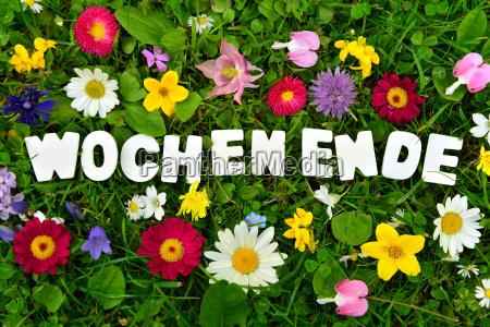 nice weekend text on flower meadow