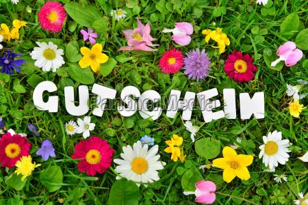 voucher text on flower meadow