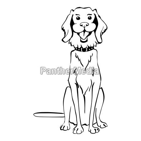 vector sketch funny golden retriever dog