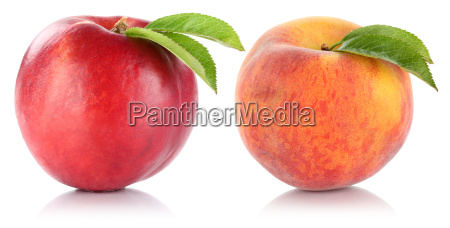 isolated peach nectarine fruit exempted fruits