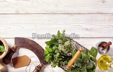 border of fresh culinary herbs and