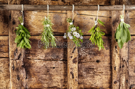 five bunches of assorted fresh herbs