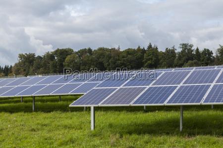 solar cells in a solar farm