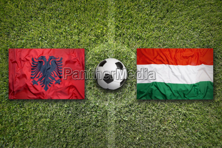 albania vs hungary flags on soccer