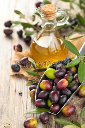 olive fresche e olio doliva