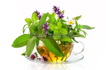 fresh herbs for tea