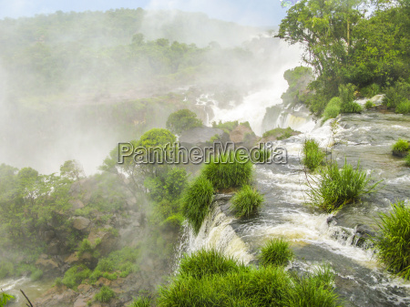 iguassu waterfall in south america tropical