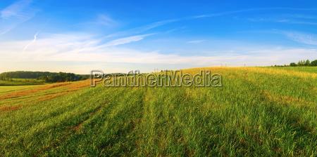 panoramic rural landscape