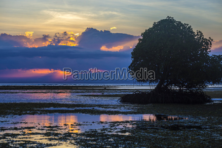 indonesia sumbawa island at sunset