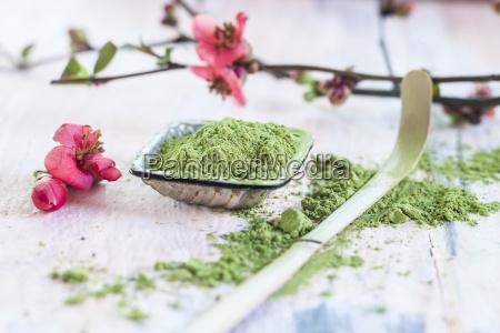 matcha powder pink flowers and bamboo