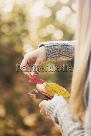 teenage girl sorting autumn leaves