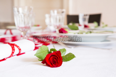 red rose on laid table at