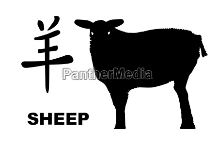 chinese year of the sheep