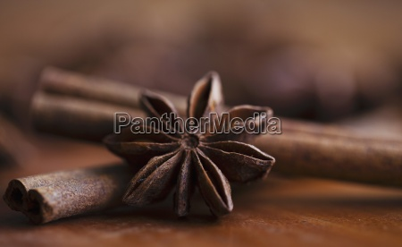 star anise and cinnamon sticks close