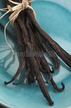 a bundle of vanilla pods
