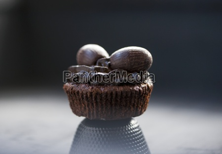 a chocolate cupcake with chocolate frosting