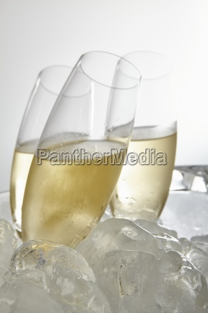 glasses of prosecco surrounded by ice