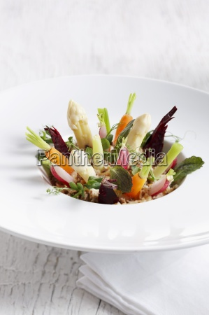 various vegetables standing upright on a