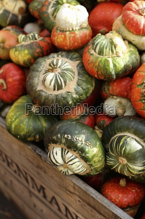 a large crate of turban squash