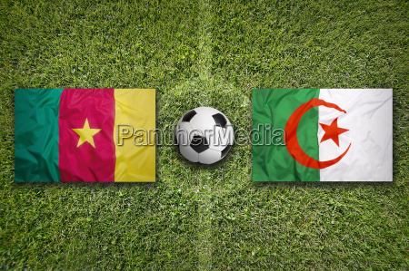 cameroon vs algeria flags on soccer