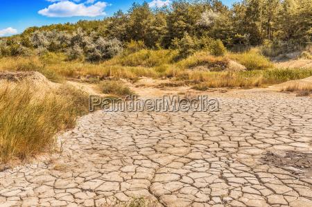 cracked earth soil