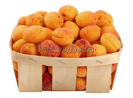 fresh ripe apricots in wooden basket
