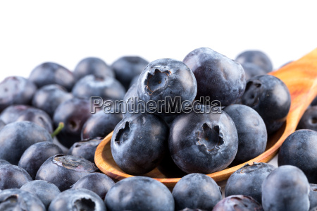 blueberries on white background