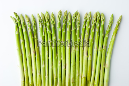 green asparagus on the white background