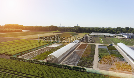 view of fields and greenhouses munich