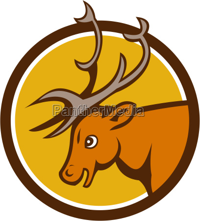 stag deer buck head circle cartoon