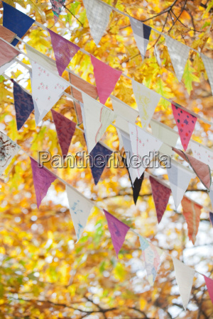 flags flying against autumn leaves