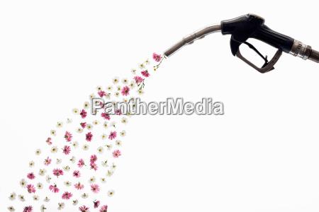a petrol pump releasing flowers