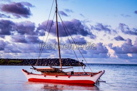 tribal catamaran