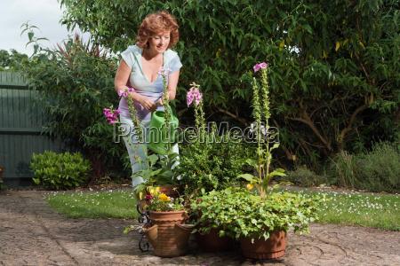mature woman watering plants