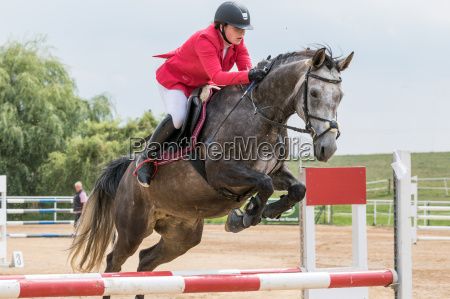 horsewoman in red jacket is jumping