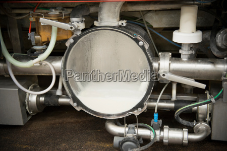 milk collection machinery in milking parlour