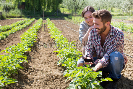 young couple crouched in vegetable garden
