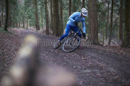 cyclist on tree lined dirt track
