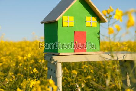 model house in field of flowers