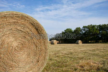 close up of hay bale in